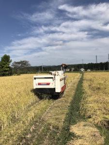 2017年 秋のお米の収穫